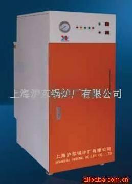 DZL1-1.25-AII卧式环保节能链条燃煤蒸汽锅炉